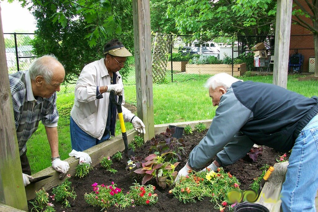 Living United to Improve Health in Columbia County